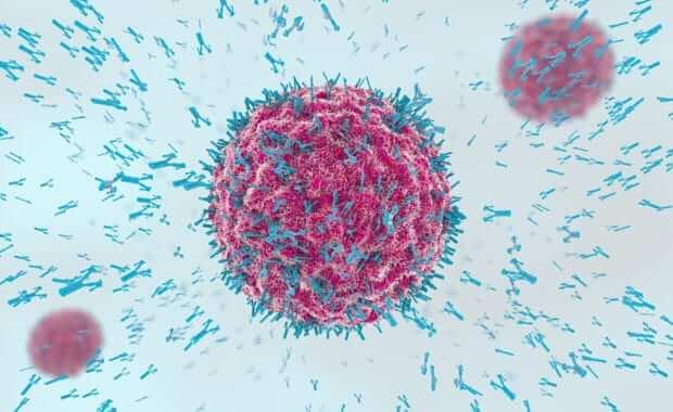 3d illustration of antibodies attacking virus cell